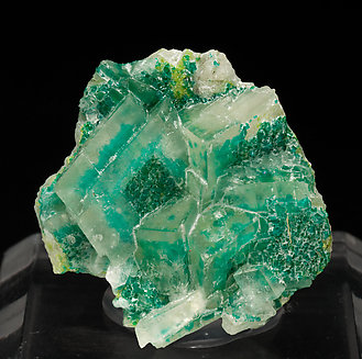 Calcite with Dioptase.