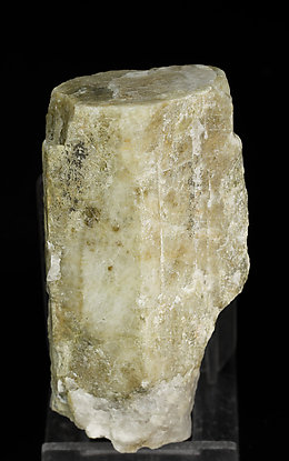 Beryl with Quartz and Muscovite.