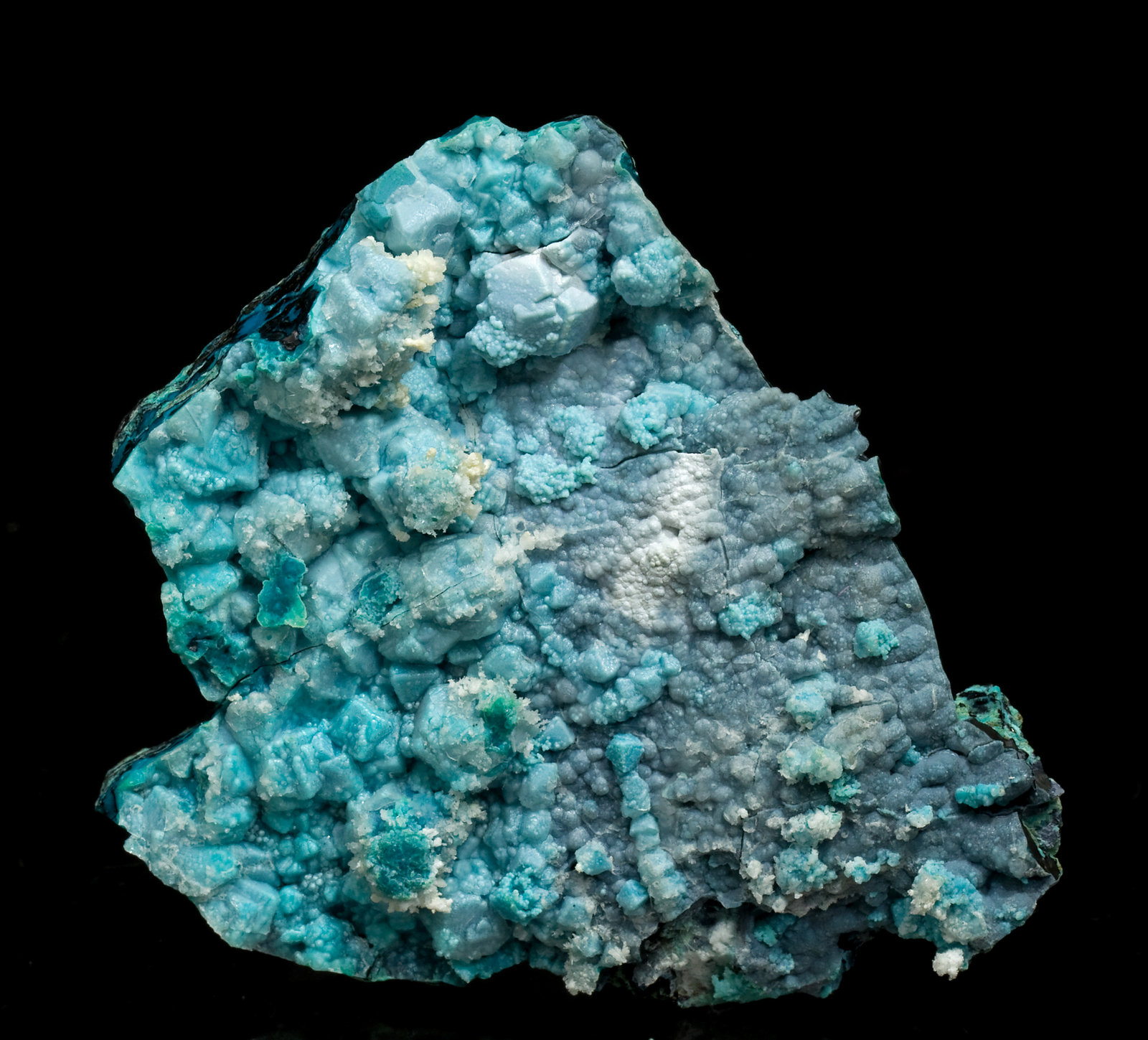 specimens/s_imagesV1/Chrysocolla-TC36V1f.jpg