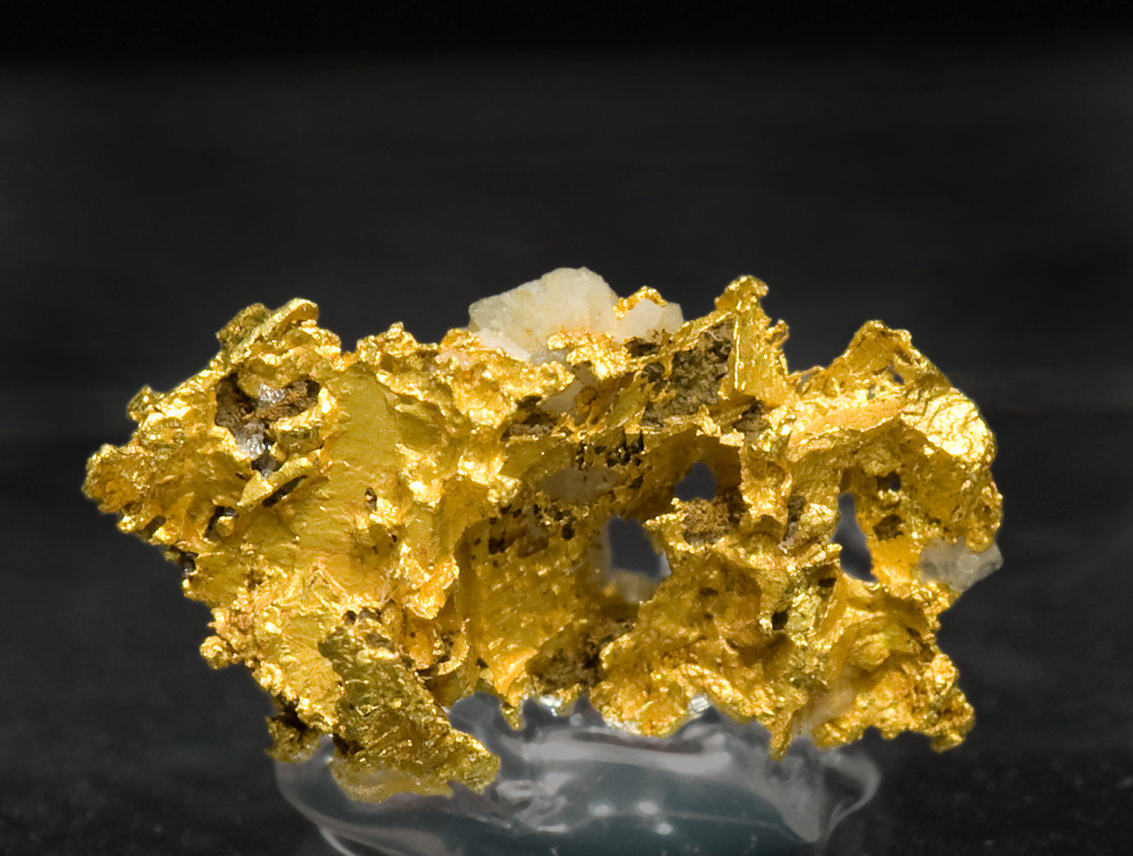 specimens/s_imagesV5/Gold-NL16V5f.jpg