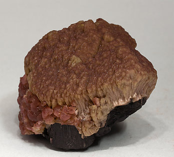 Elbaite (variety rubellite) on Schorl. Side