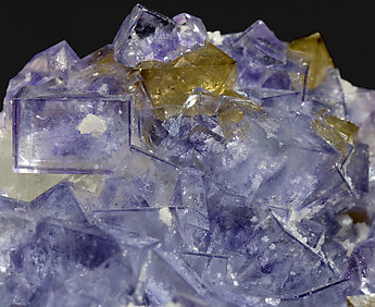 Fluorite with Scheelite and Calcite.