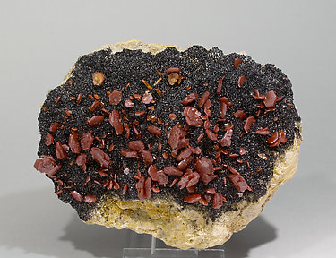 Vanadinite with Mottramite.