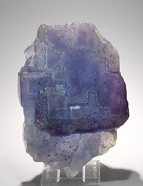 Fluorite with Chalcopyrite inclusions. Light behind