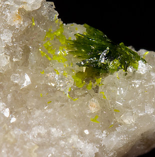 Rodalquilarite with Alunite and Quartz.