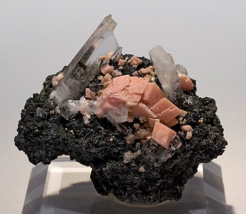 Rhodochrosite with Natrolite, Aegirine and amphibole.