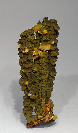 Wulfenite on Mottramite. Rear