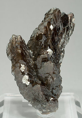 Axinite-(Mn) with Calcite.