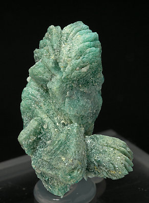 Borcarite with Cahnite. Side