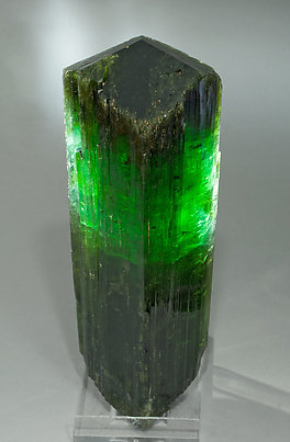 Elbaite. Light behind