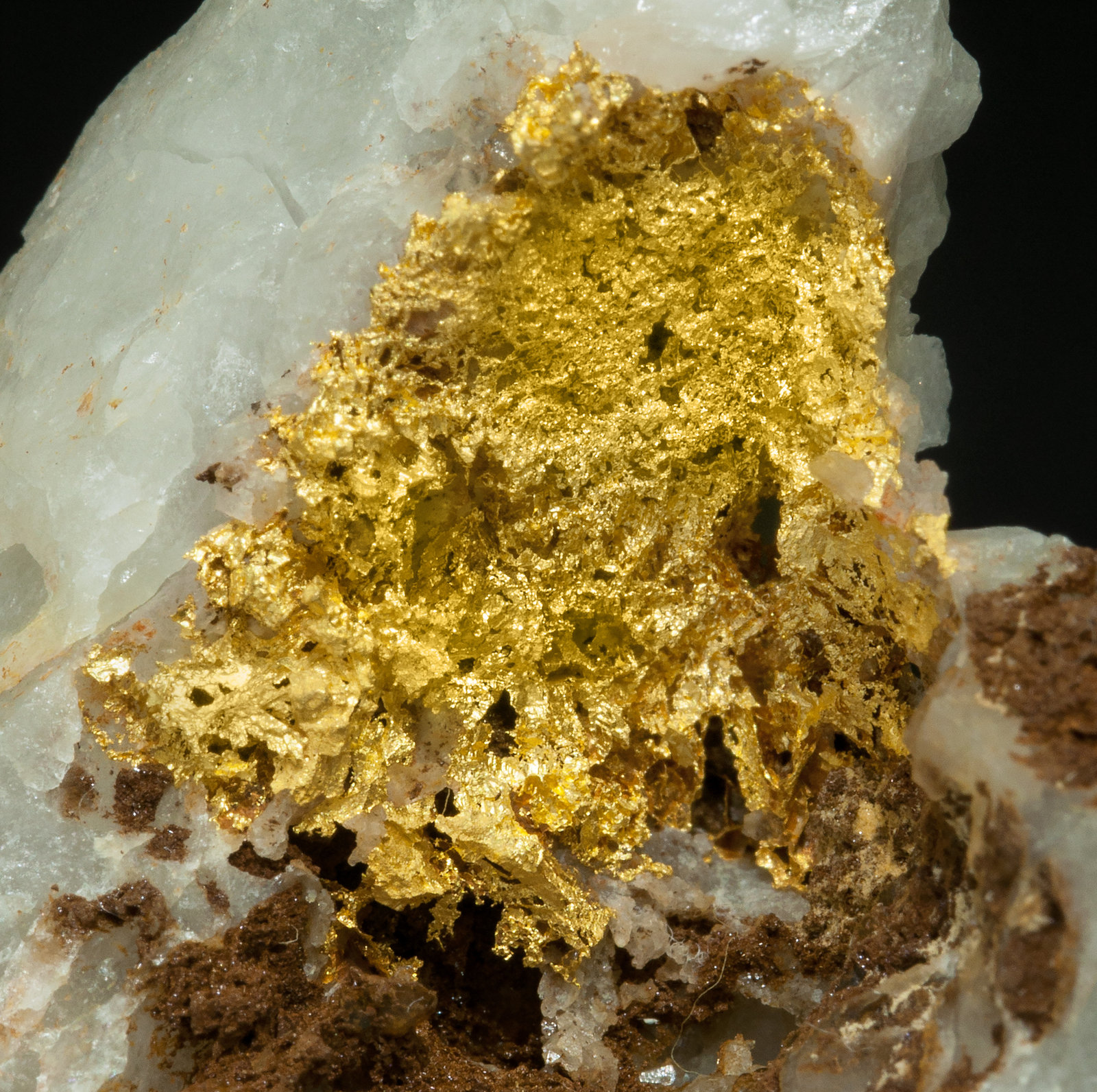 specimens/s_imagesY4/Gold-EA68Y4d.jpg