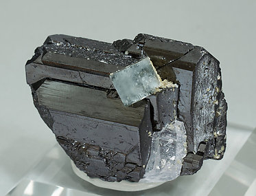 Fluorapatite with Ferberite, Quartz and Muscovite.