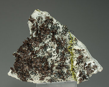 Axinite-(Fe) with Albite and Epidote.