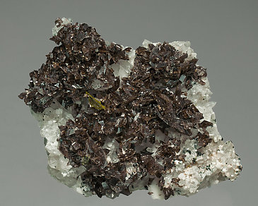 Axinite-(Fe) with Quartz and Albite.