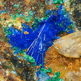 Linarite with Cerussite and Brochantite.