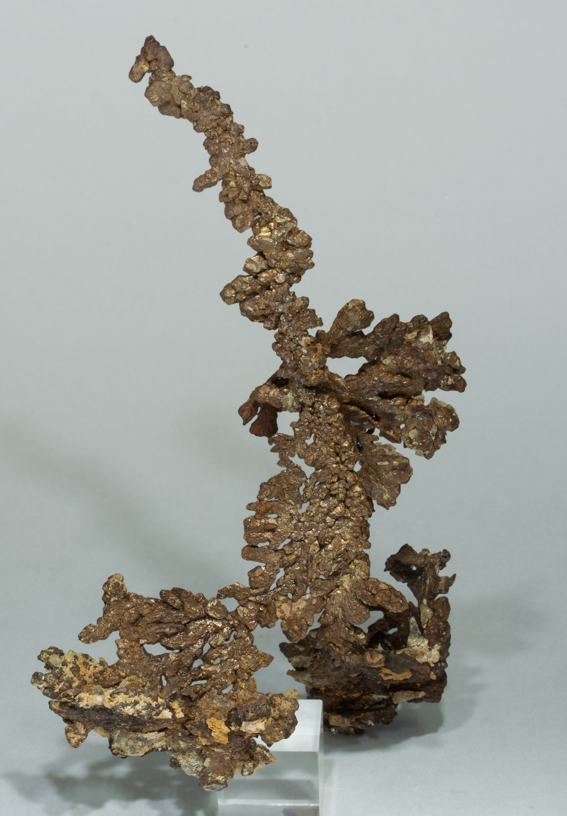 specimens/s_imagesY9/Copper-VA47Y9f.jpg
