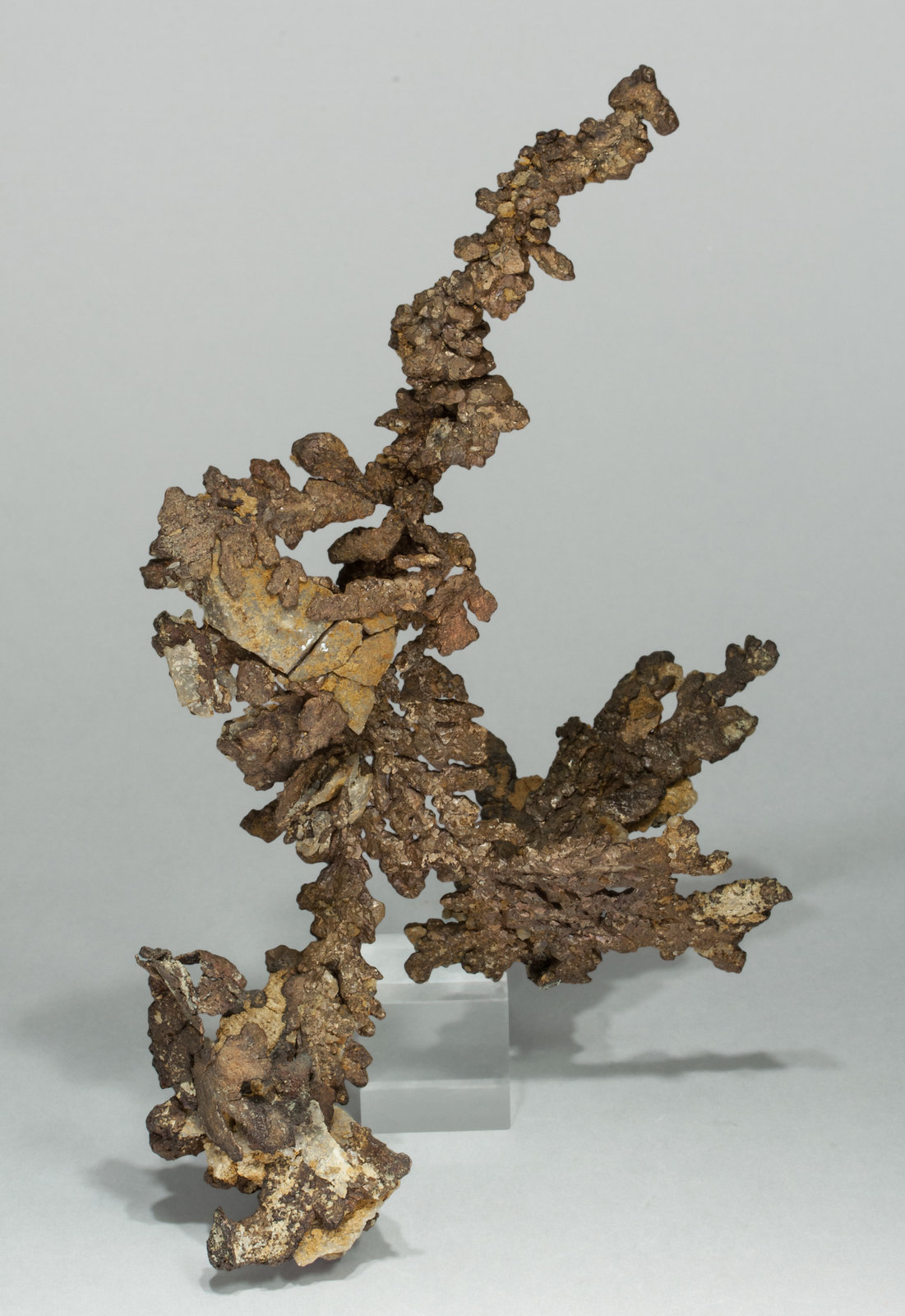 specimens/s_imagesY9/Copper-VA47Y9r.jpg