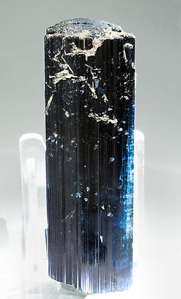 Elbaite (variety indicolite) with Fluorapatite. Light behind