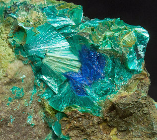 Tyrolite with Azurite.