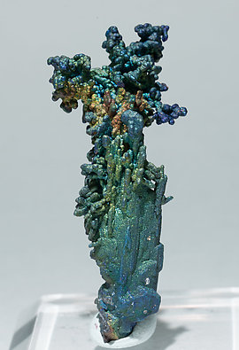 Chalcocite and Djurleite with Chalcopyrite.