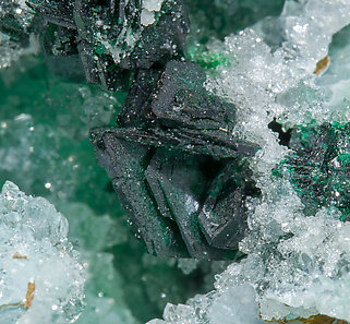 Clinoatacamite with Quartz.