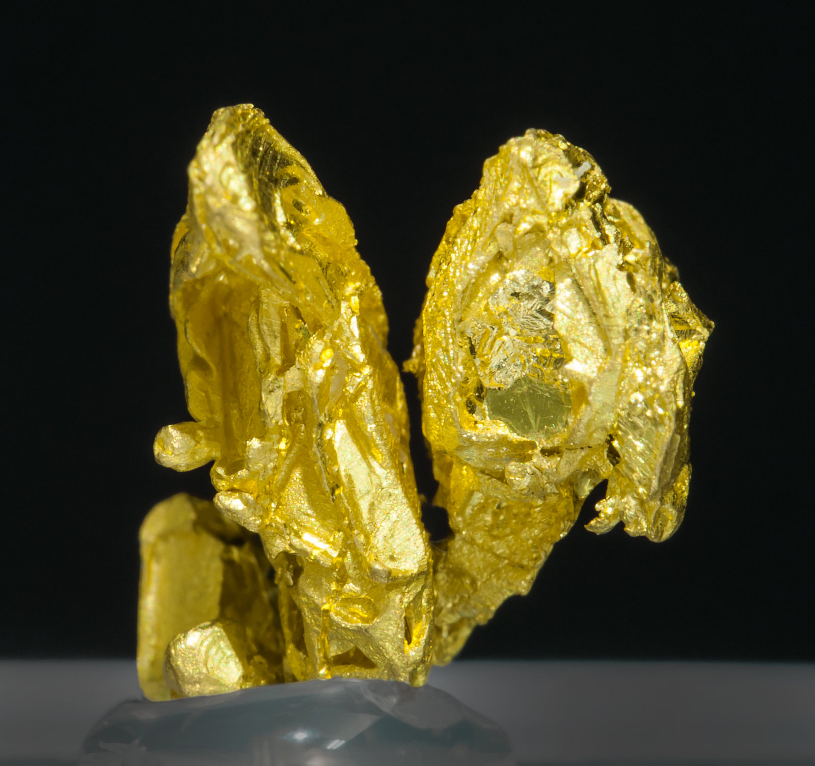 specimens/s_imagesZ7/Gold-TQ49Z7r.jpg
