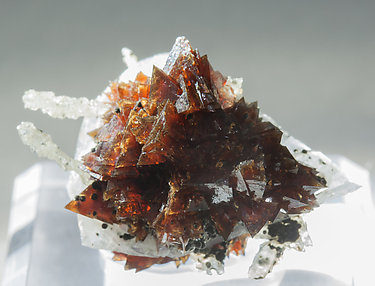 Helvine-Genthelvite with Quartz and Calcite. Light behind