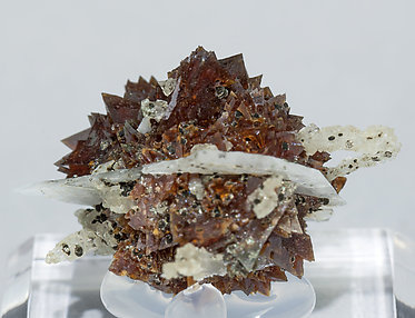 Helvine-Genthelvite with Quartz and Calcite. Rear